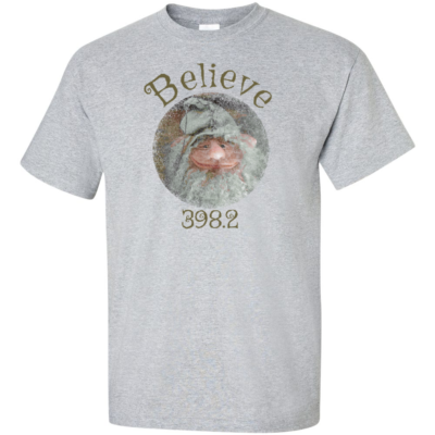 Believe Gnome Grey