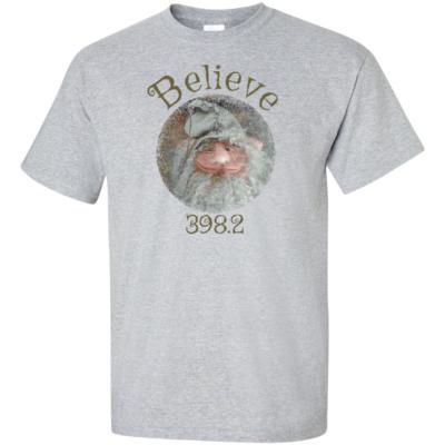 Believe Gnome Grey